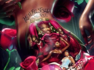 Megan Thee Stallion Don't Stop Mp3 Download